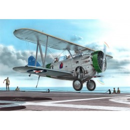 """1:72 FF-1 """"US Navy Two-seat..."""
