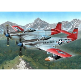 1:72 F-82H Twin Mustang...