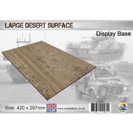 Large Desert Surface