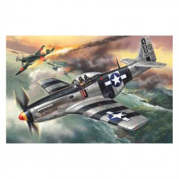 1:48 Mustang P-51K, WWII...