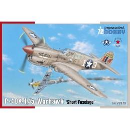 1:72 P-40K-1/5 Warhawk...
